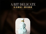 景德镇伟岸陶瓷/陶瓷酒瓶定制批发/九龙戏珠